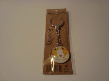 Sleutelhanger gorgeous goldies Alex Clark 3.5 verpakking
