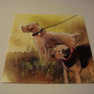 Wenskaart terriers Alex Clark 14x14