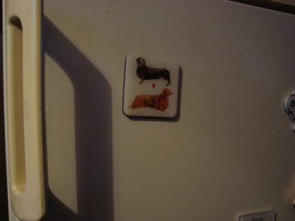 Koelkastmagneet debonair dachshunds Alex Clark 6x6 demo