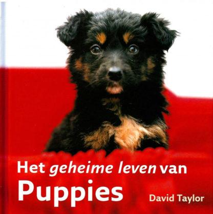 Geheime leven van puppies voorkant