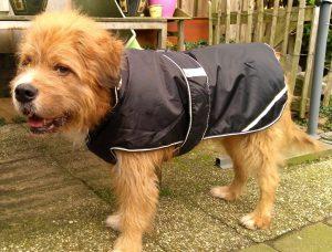 Mazzel showt zijn jas