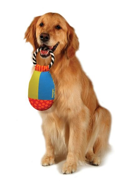 Petstages Toss and retrieve met Golden