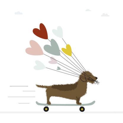 Frits de teckel op een skateboard met hartjes