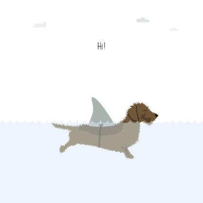Frits de teckel is een haai